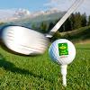 golfidylle
