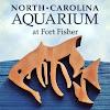 NCAquariumFortFisher
