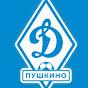 Мини-футбольная команда Динамо Пушкино