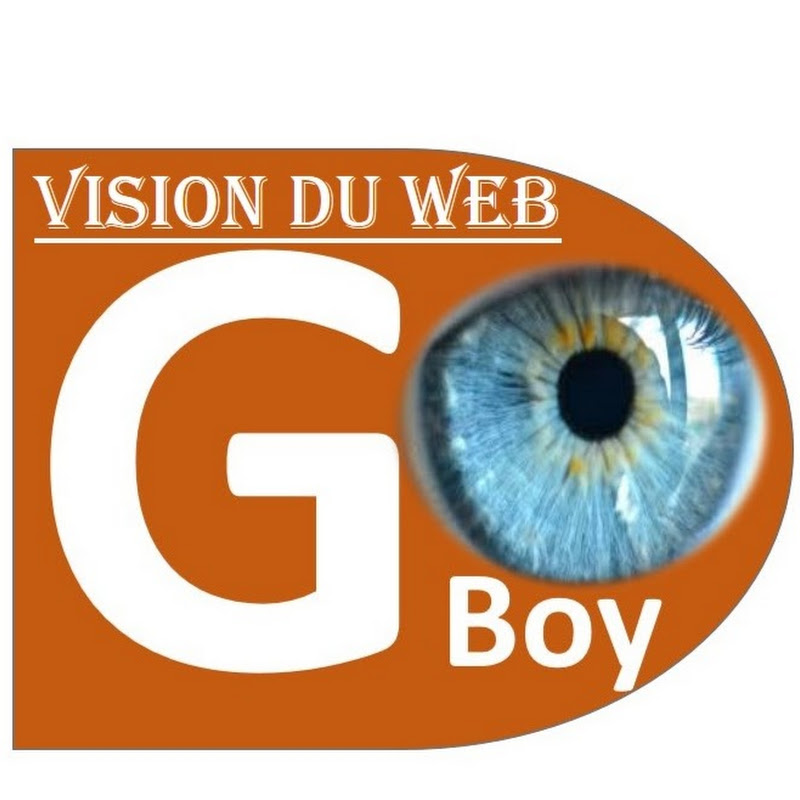Vision du web (vision-du-web)