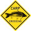 CARP CROSSING