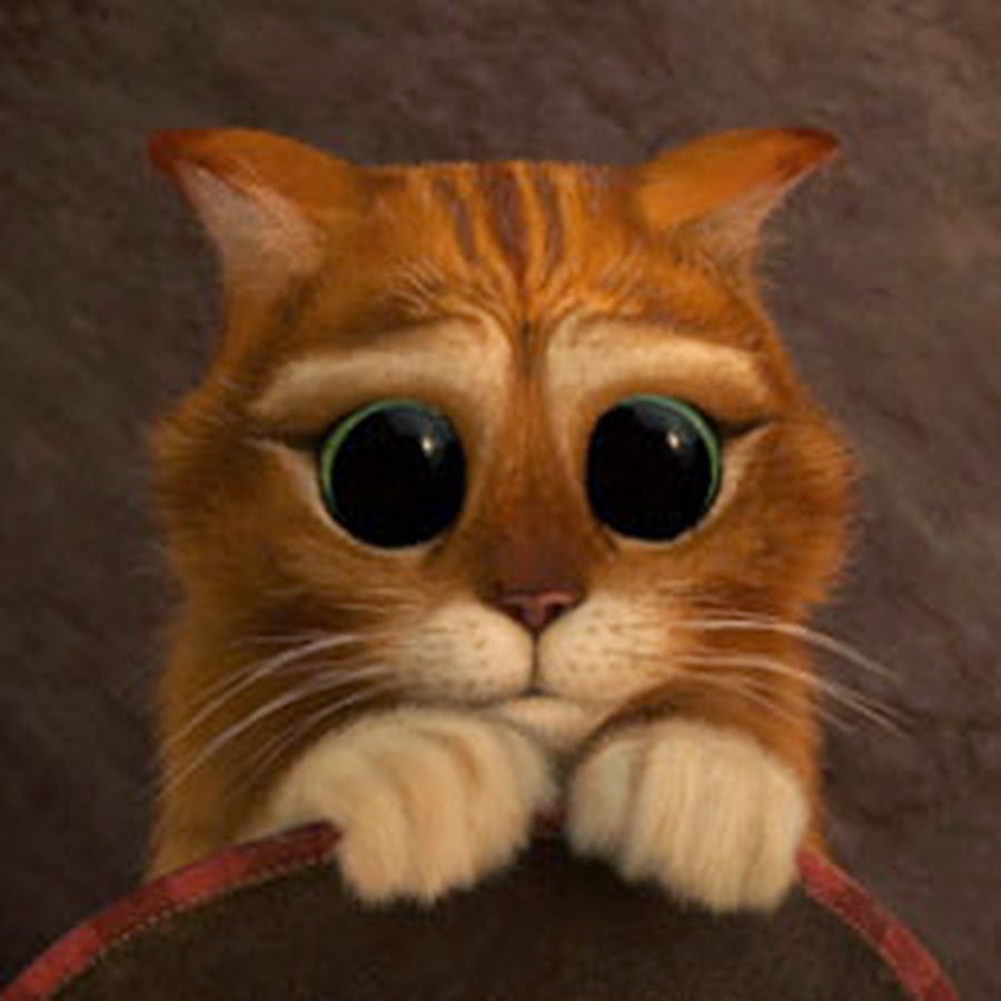 Именем, анимация картинки кот из шрека