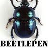 Cedric beetlepen