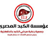 Egyptian liver Foundation