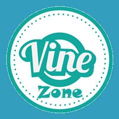 Vine Zone Net Worth