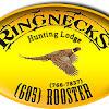 Ringnecks Hunting Lodge