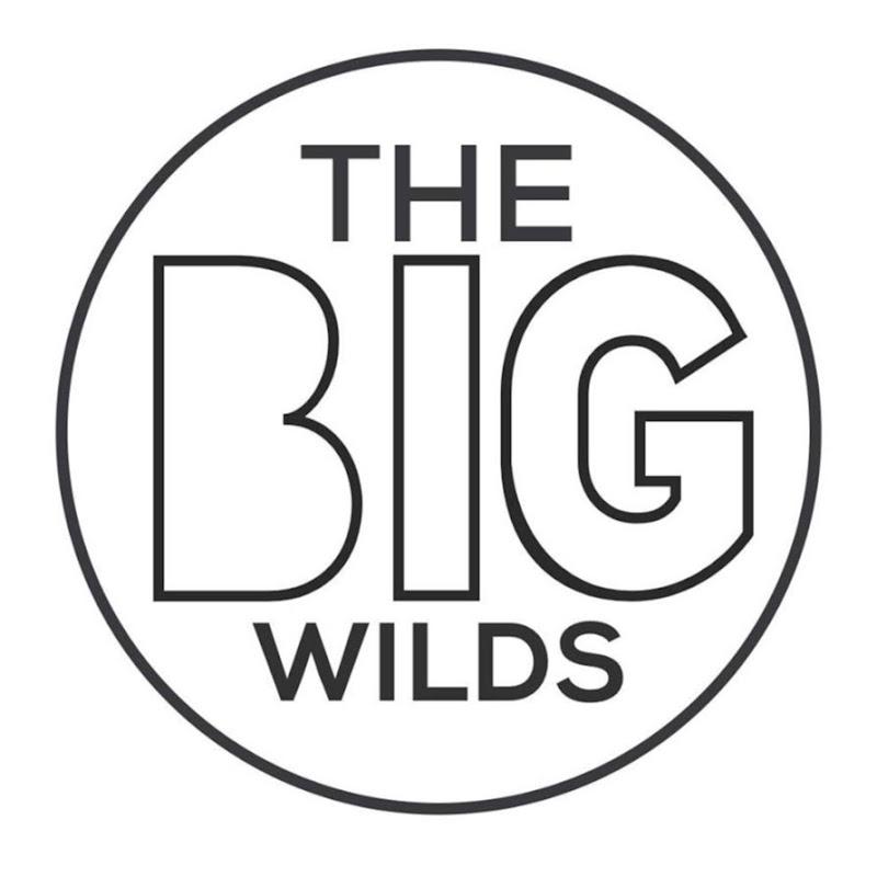 TheBigWilds