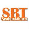 SBT Seabuckthorn