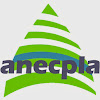 AnecplaTV