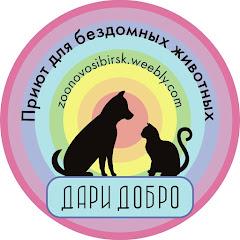 Приют для бездомных животных Россия Новосибирск
