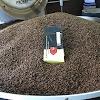 Kaffeemanufaktur Schnibbe GmbH