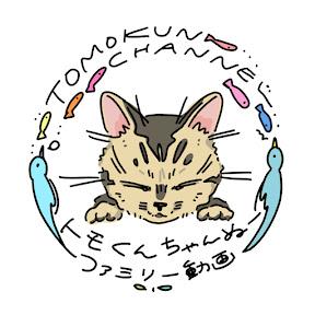 TOMOKUN CHANEL!トモくんちゃんぬー! YouTube