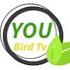 You Bird Tv