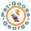 Pet Goose George & CraZBob1