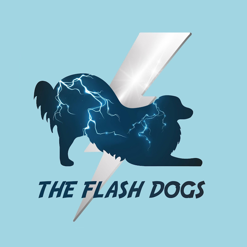 The flash dogs