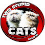 Two Stupid Cats Show