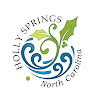 Town of Holly Springs TV