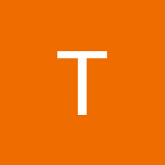 Tiffany Young Net Worth