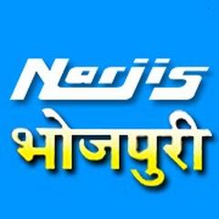 Narjis Bhojpuri Net Worth
