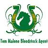 Tom Malone Bloodstock
