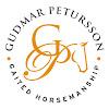 Gudmar Petursson Gaited Horsemanship