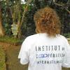 Institut de Coopération Internationale