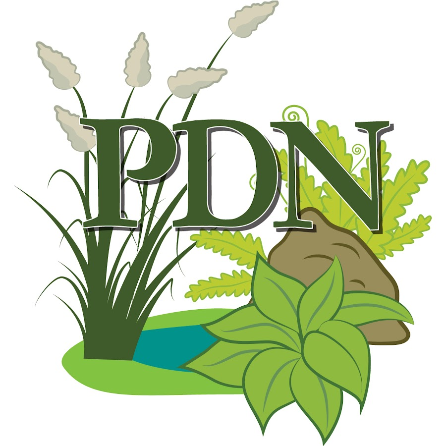 Plant Delights Nursery Inc You