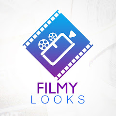 Filmylooks Net Worth