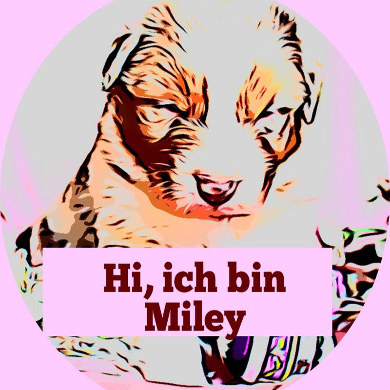 Miley Der Shepherd