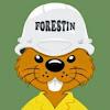 ClubForestin