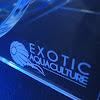 Exotic Aquactulture