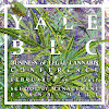 Yale Business of Legal Cannabis
