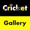 Cricket Gallery