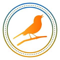 Pássaros e Cantos Oficial