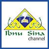 Ibnu Sina Schools
