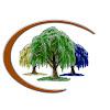 Triple Willow Mental Health, Inc