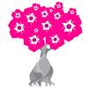 Plante Rosa do Deserto - Valmor PRD