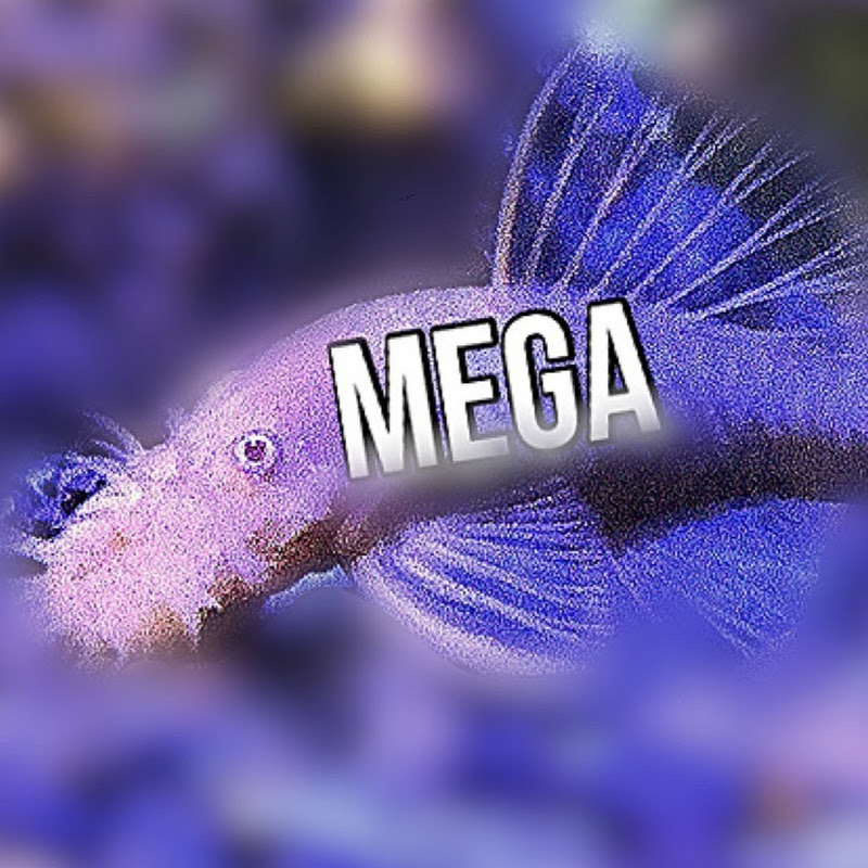 Megalon Fan