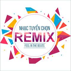 Nam Việt Remix Net Worth