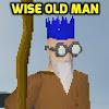 WiseOldMan