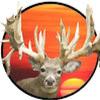 World Class Hunting Ranches LLC.