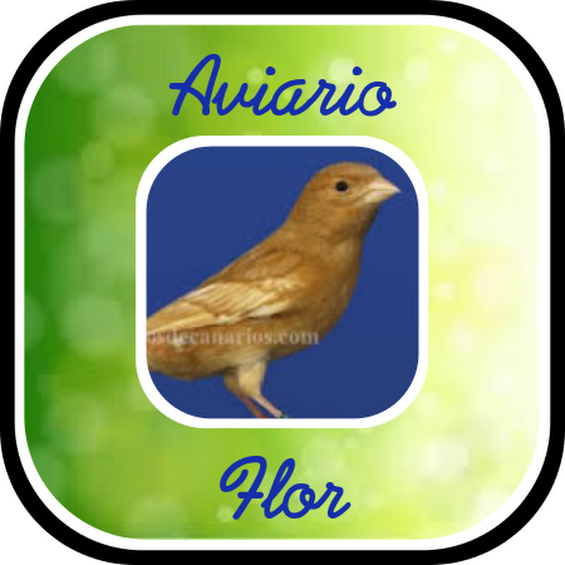 AVIARIO FLOR