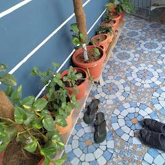 Muzhu mathi