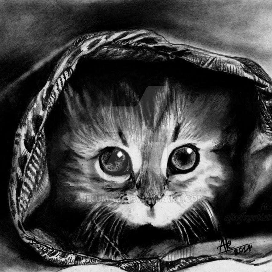 Открытка, самые милые картинки животных карандашом