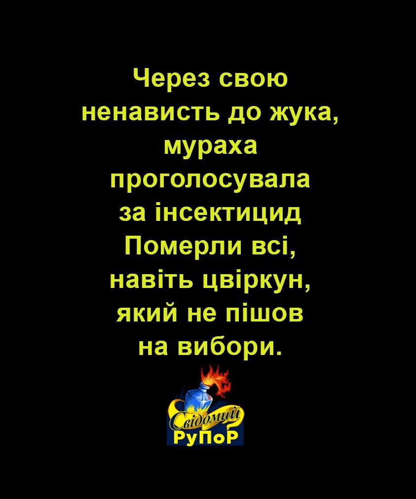 Заместителем главы ГБР собираются назначить адвоката Януковича Бабикова, - родственники Героев Небесной Сотни - Цензор.НЕТ 4815