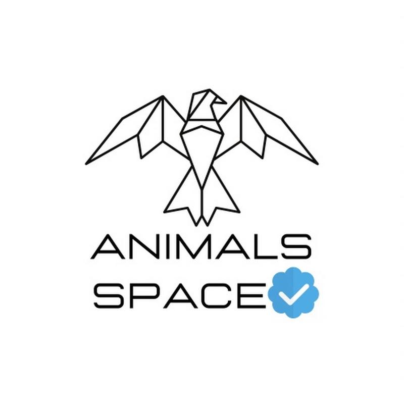 Animals Space (animals-space)