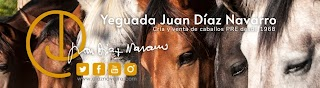 Juan Díaz Navarro stud farm (PRE horses)