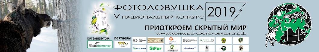 Проект Лесной Мониторинг