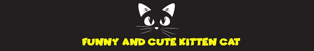 Funny And Cute Kitten Cat