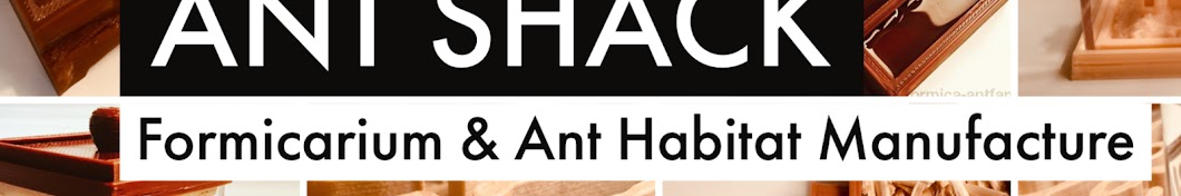 ANT SHACK - Formicarium & Ant Farm Shop
